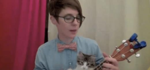 【ニヤニヤ注意】なんとしてもウクレレを弾きたい猫ちゃんがとってもキュート!