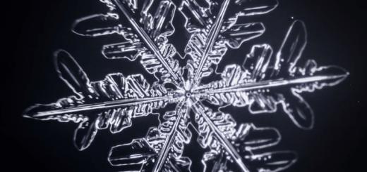 息を飲む美しさ…雪の結晶ができるまで