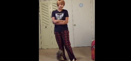 もういいかげんにしろ!アナ雪主題歌「Let It Go」を流すと怒る猫