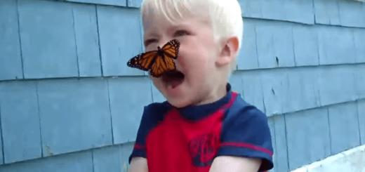 育ててくれてありがとう! 蝶にお別れのキスを交わす少年にほっこり
