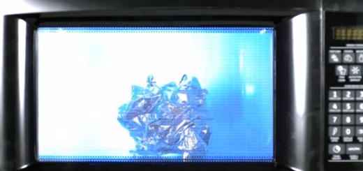 スイカや電球まで…! 身近なものをなんでも電子レンジにぶっ込んだ映像にヒヤリ